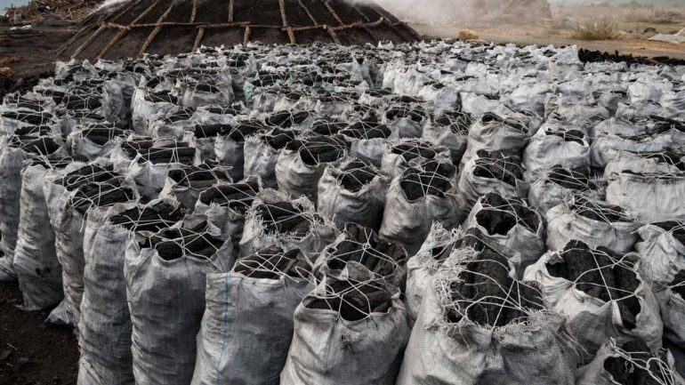 charcoal export business in Nigeria